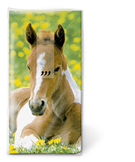 Foal Paper Tissues
