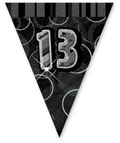 Black/Silver Age 13 Prism Pennant Banner