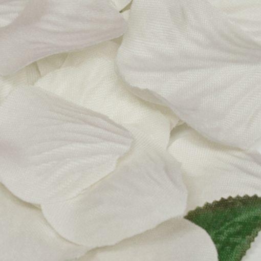 Eleganza Rose Petals Ivory
