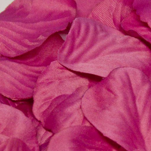 Eleganza Rose Petals Fuchsia
