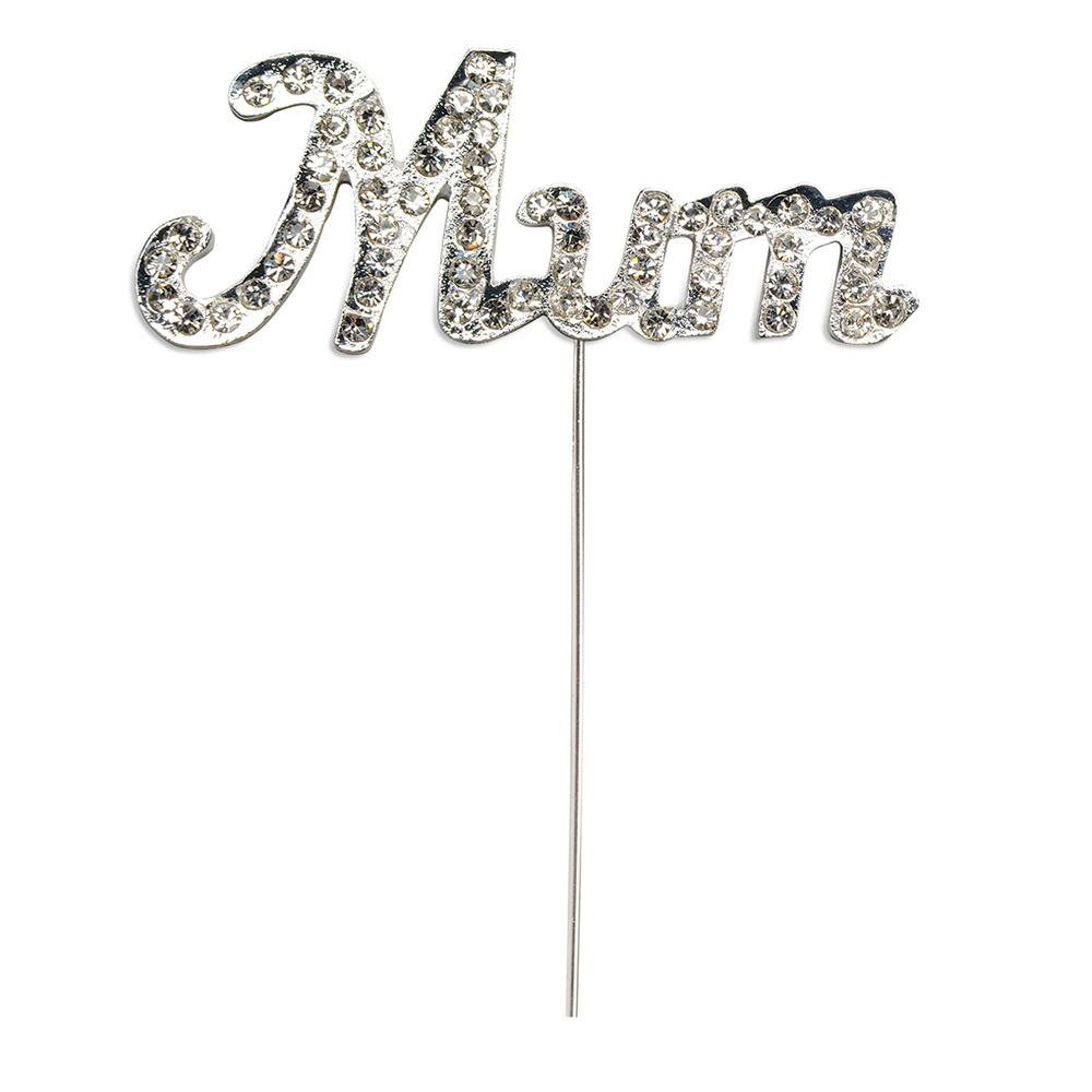 Diamanté Mum on Silver Stem