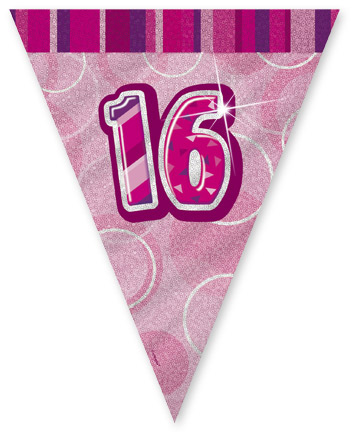 "Pink Age ""16"" Prism Pennant Banner"