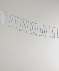 Chic Boutique Just Married Bunting