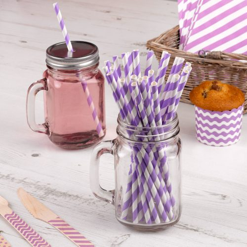 Carnival Paper Straws Purple Stripes
