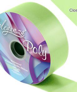 Eleganza 50mm Poly Ribbon Mint